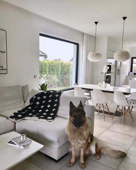 特色公寓图片 设计