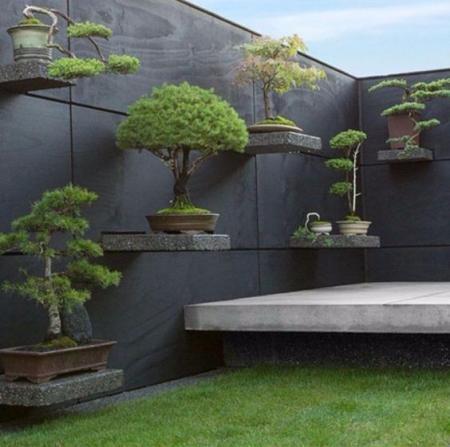 创意庭院设计 图库