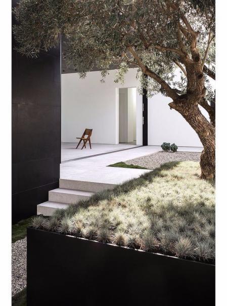 流行庭院设计图片