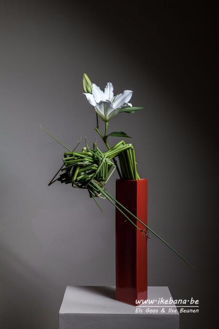 最新插花设计参考