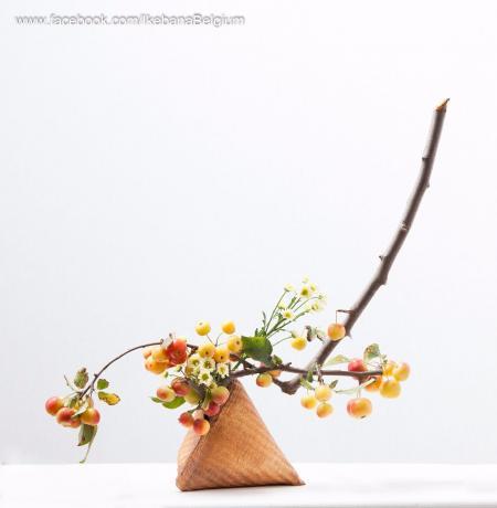 最新小清新插花怎么设计
