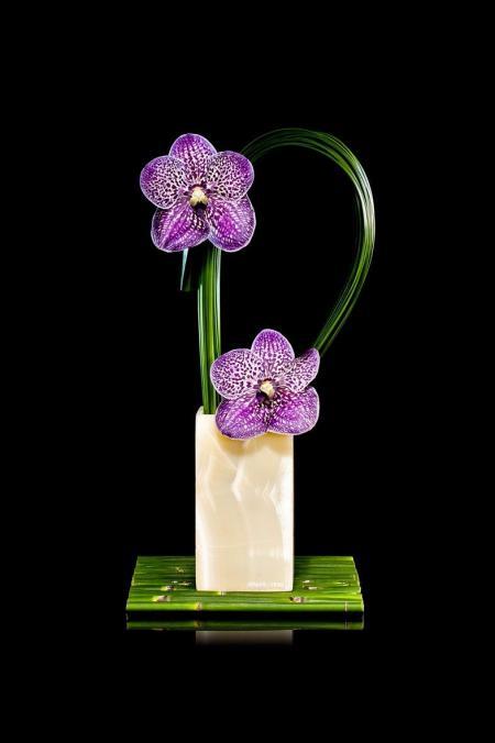 最新高清插花设计图设计