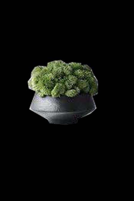 最新最流行花艺参考设计