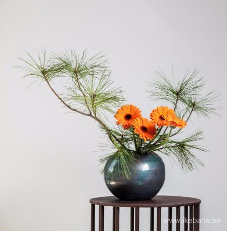 最新小清新花艺图设计设计