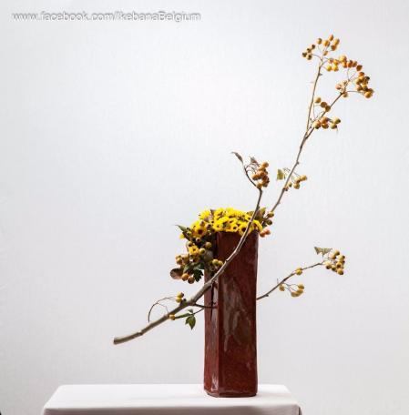 最新经典花艺设计素材