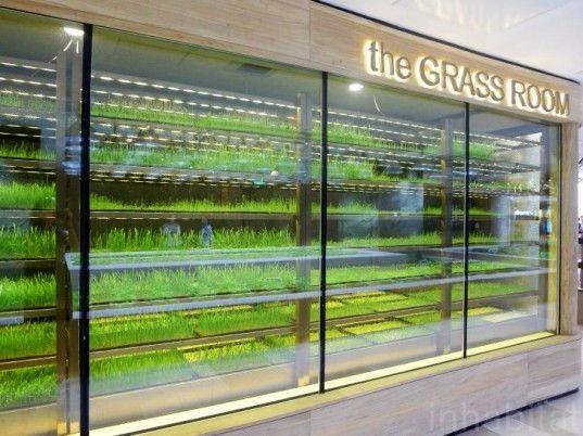 现代感购物中心设计方案