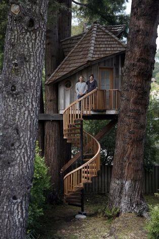 流行树屋设计 参考