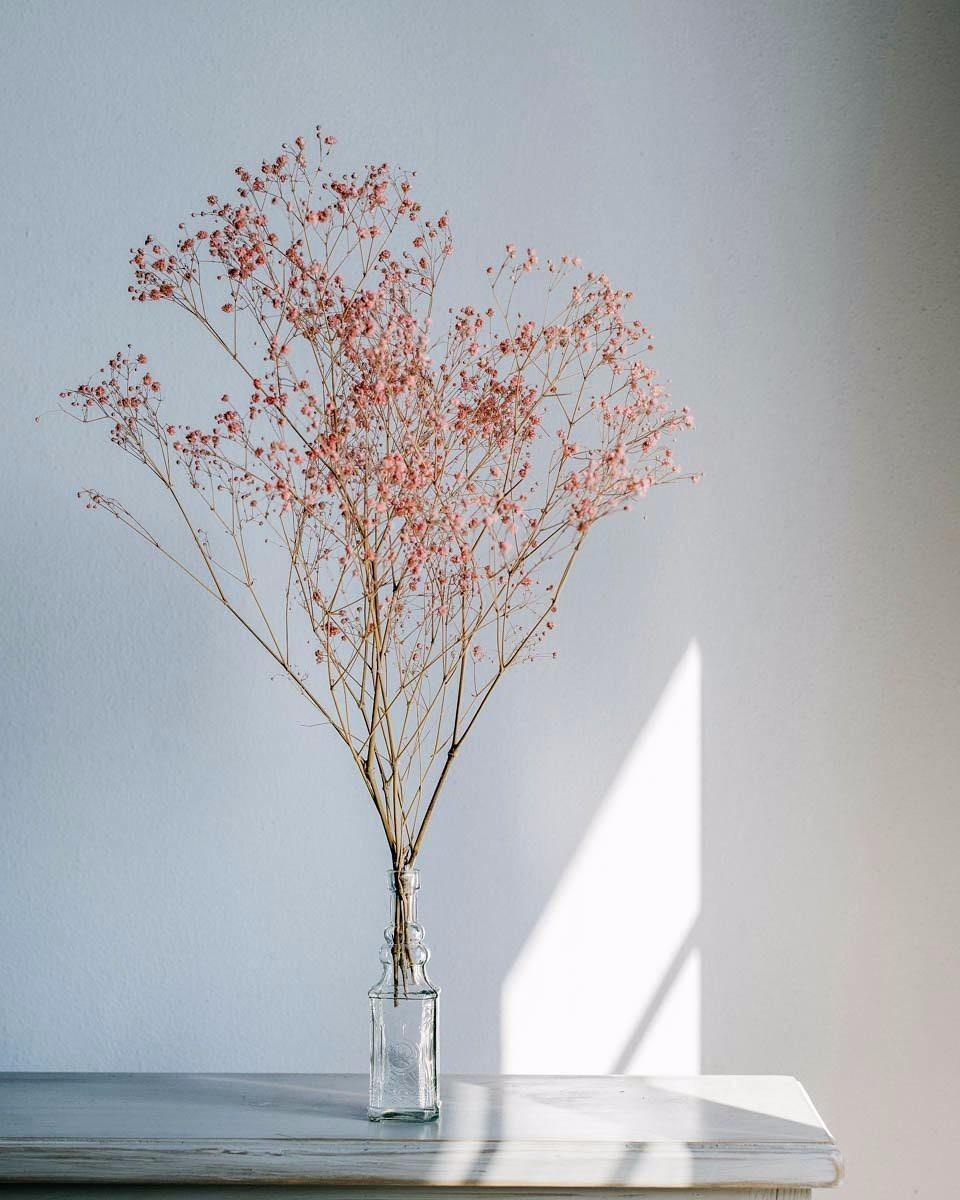 网红插花素材 设计