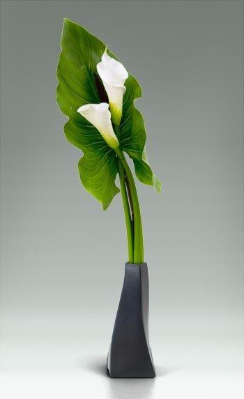最新精美插花设计灵感图