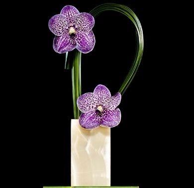最新唯美插花设计灵感图