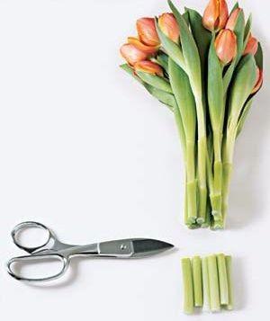 最新个性花艺制作设计